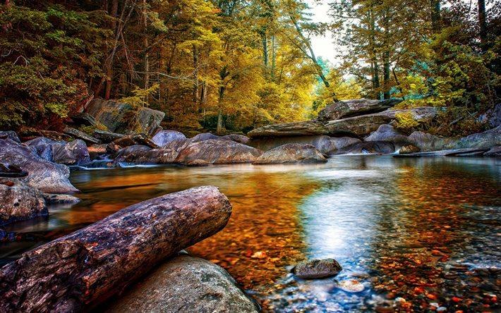 foto de Télécharger fonds d'écran l'automne la forêt le lac le