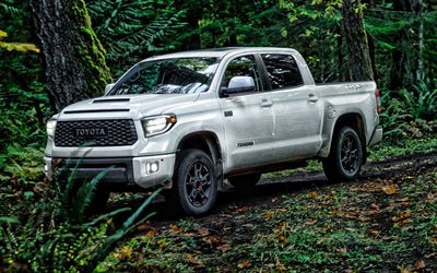 2020, Toyota Tundra, exterior, front view, Tundra TRD Pro, white pickup truck, new white Tundra, japanese cars, Toyota