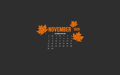 2020 November Calendar, minimalism style, gray background, autumn, 2020 calendars, Gray 2020 November Calendar, creative art