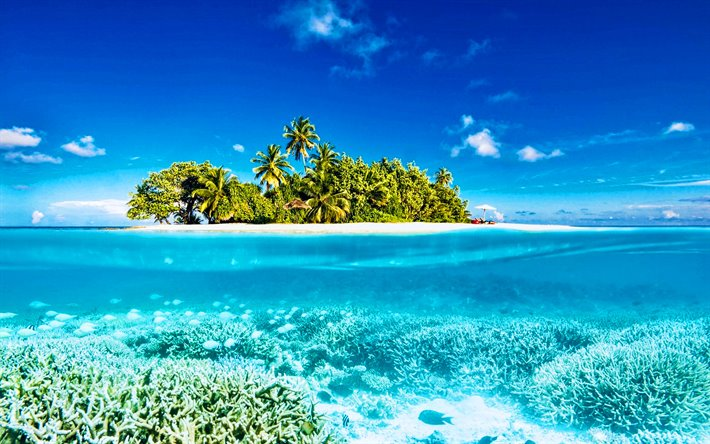 Maldives, summer, tropics, underwater world, paradise, HDR