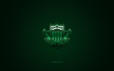 Matsumoto Yamaga FC, Japonais, club de football, J1 Ligue, logo vert, vert en fibre de carbone de fond, football, Matsumoto, Japon, Matsumoto Yamaga logo, le football, le Japon Ligue de Football Professionnel