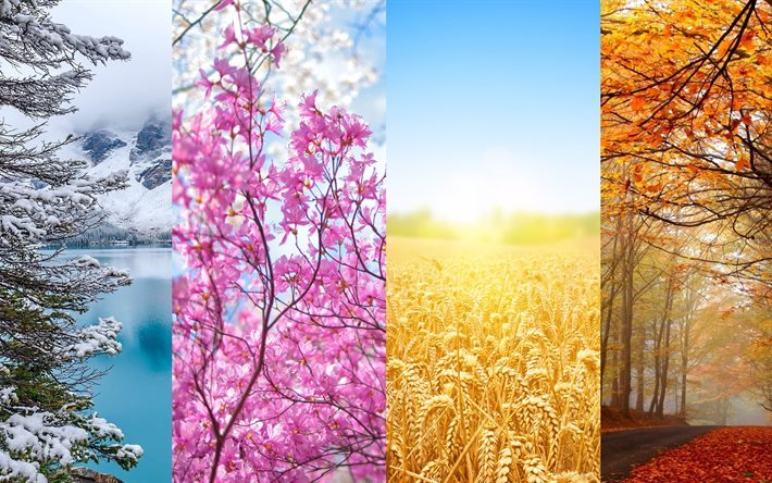four seasons, seasons, winter, spring, autumn, summer, 4K