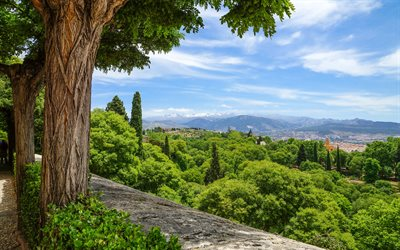 green forest, mountain landscape, blue sky, mountains, Granada, Spain