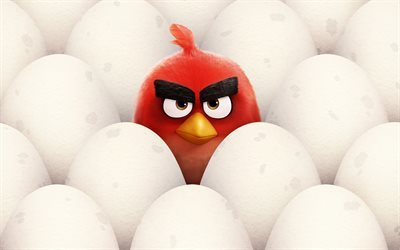 Red, eggs, 3d-animation, Angry Birds
