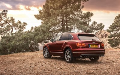 Bentley Bentayga, 2017, luxury SUV, burgundy Bentayga, British cars