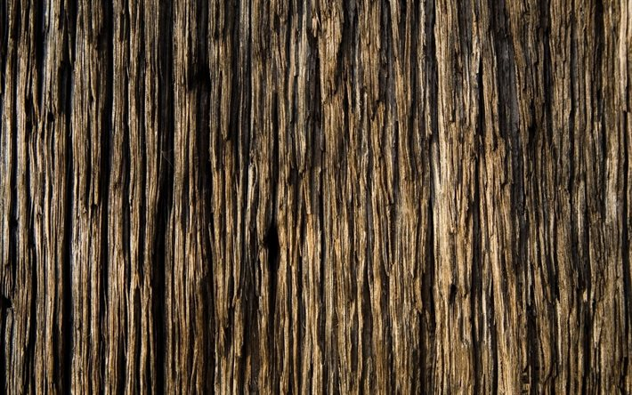 wood bark texture, wood background, wood bark, wood texture, natural textures