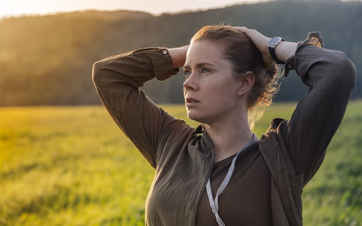 Arrival, 2016, Amy Adams, Why are they here