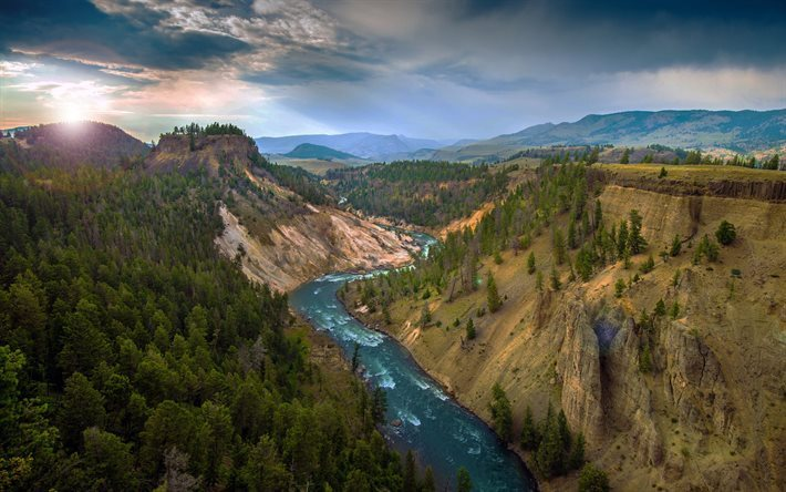 Grand Canyon, river, forest, Yellowstone National Park, America, USA