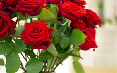 red roses bouquet, background with roses, red flowers, roses, beautiful flowers