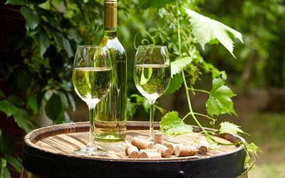 white wine, glasses with wine, grapes, wine