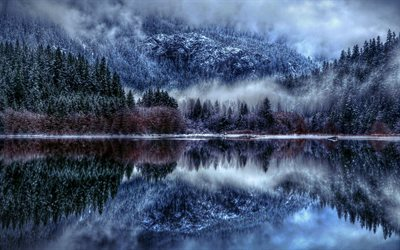 Winter lake, snow, winter forest, lake, snowy forest, winter landscape