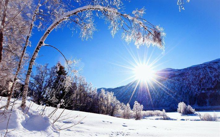 Scarica Sfondi Inverno Neve Montagna Foresta Fiume Paesaggio