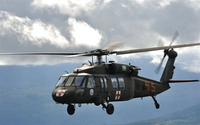 Sikorsky UH-60 Black Hawk, rescue helicopter, US Navy, military helicopters, USA, Sikorsky
