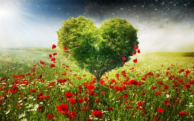 tree heart, red wildflowers, love nature, ecology, environment, heart shaped tree, love the earth