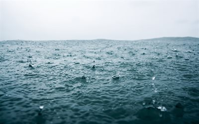 Rain, drops, sea, waves, rain in the sea