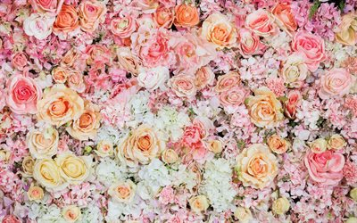 floral background, pink roses, floral pattern, roses, beautiful flowers