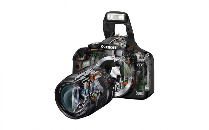Canon EOS 500D, optical camera diagram, EOS 500D drawing, cutaway optical camera, EOS 500D cutaway, Canon