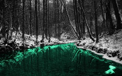 winter, forest, emerald river, monochrome