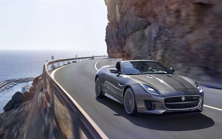 Jaguar F-type, 2018, sports coupe, new F-type, gray Jaguar