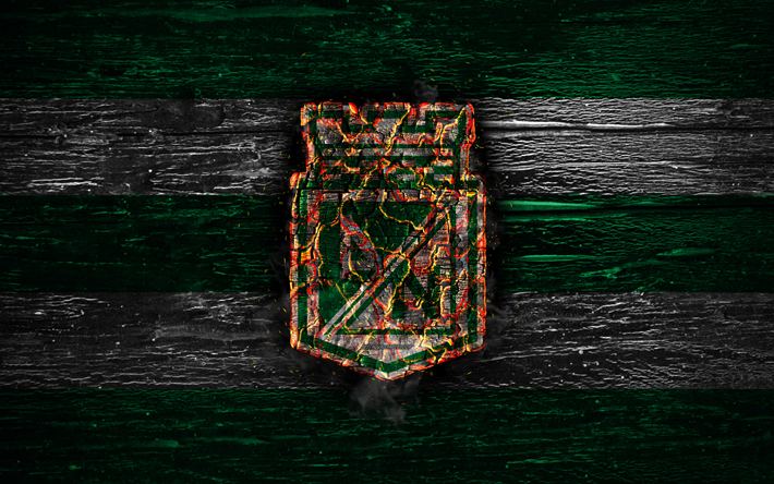 Atletico Nacional FC, fire logo, Liga Aguila, green and white lines, Colombian football club, grunge, football, Categoria Primera A, Atletico Nacional SA, soccer, Atletico Nacional logo, wooden texture, Colombia