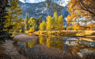 Merced River, autumn, mountain landscape, forest, yellow trees, mountain river, Yosemite National Park, California, USA