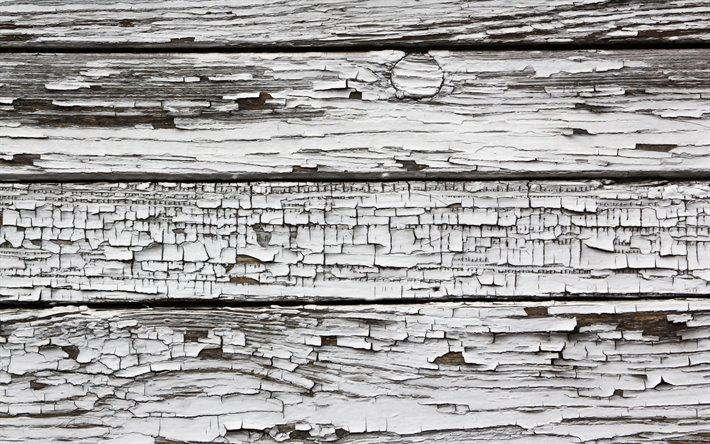 Scarica Sfondi Bianco Di Legno 4k Macro Texture Linee Di Legno In Legno Sfondi Legno Orizzontali Di Tavole Di Legno Tronchi Di Legno Su Sfondo Bianco Per Desktop Libero Immagini Sfondo Del