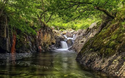 waterfall, forest, river, green trees, beautiful waterfall, rocks