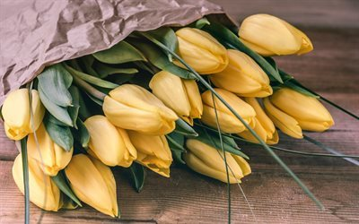 Yellow tulips, bouquet of tulips, spring, spring flowers, tulips
