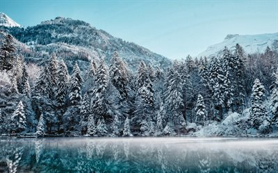 Switzerland, winter, lake, snowy forest, HDR, mountains, Europe