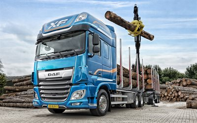 daf xf, 2019, xf530, baum, laden, holz-bar, transport, lkw mit greifarm, cargo, new blue xf, daf