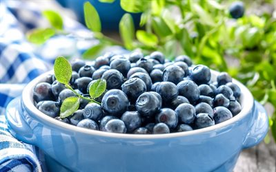 blueberries, plate of berries, blue berries, wild berries, useful berries for eyes