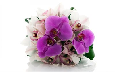 bouquet of orchids, wedding bouquet, orchids, bridal bouquet, purple orchids, beautiful flowers, orchids on a white background, floral background