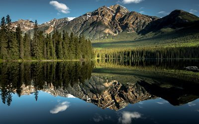 Jasper National Park, reflection, forest, lake, mountain, Alberta, Canada