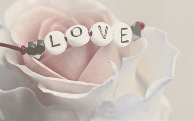 Love, bracelet, white rose, word love on rose, romance, love concepts, love pink background