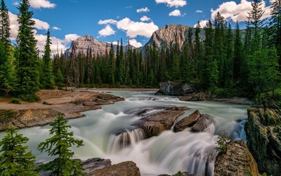 Yoho National Park, river, beautiful nature, 4k, summer, British Columbia, Canada, forest, North America, HDR