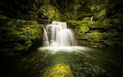 Lower McLean Falls, lake, waterfall, jungle, forest, Tautuku River, New Zealand