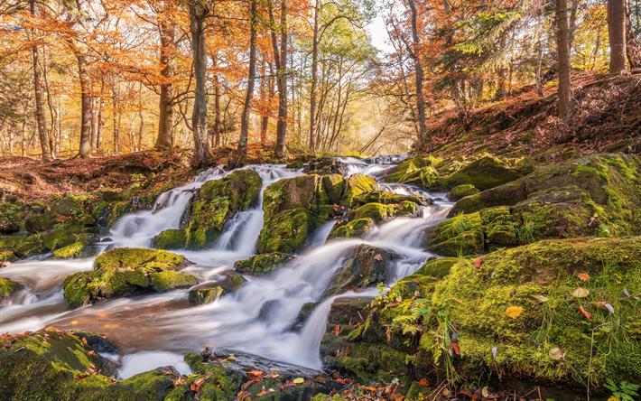 foto de Télécharger fonds d'écran Selkefall chute d'eau à l