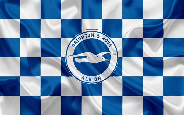 Download Wallpapers Brighton And Hove Albion FC, 4k, Logo