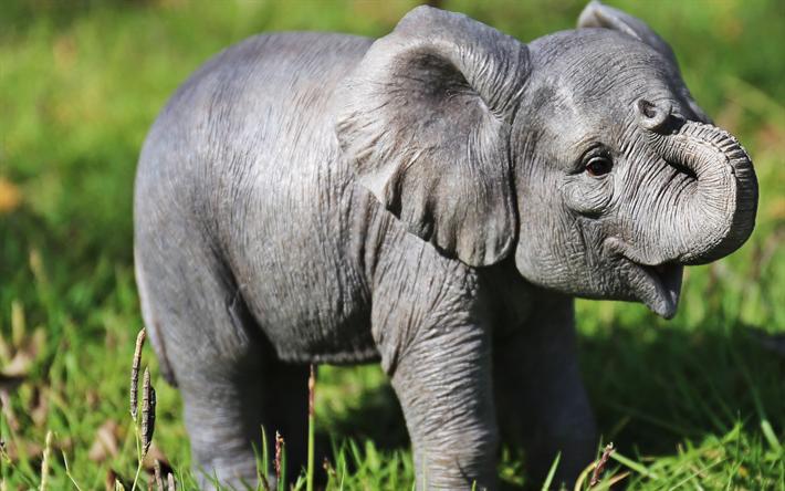 Telecharger Fonds D Ecran Petit Bebe Elephant Des Nouveau