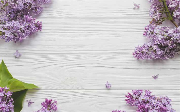 download wallpapers lilac light wooden background spring