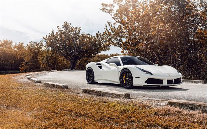Sports cars ferrari white