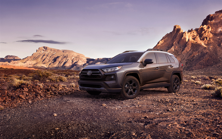 Toyota RAV4 TRD, 2019, Japanese crossover, desert, sunset, new black RAV4, USA, Toyota