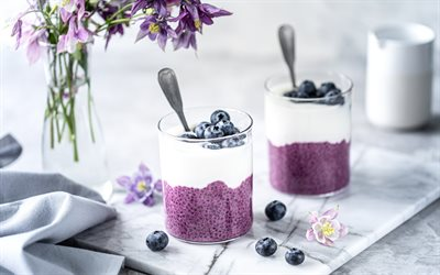 blueberry yogurt, dairy products, yogurt with seeds, breakfast, yogurt with blueberries