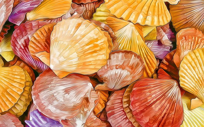 colorful shells, macro, artwork, shells textures, background with shells