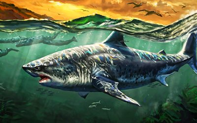 shark, predator, ocean, whales, underwater world, seagulls, artwork