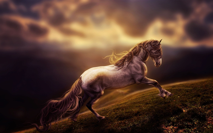 Download Wallpapers Running Horse Wildlife Blur Art Freedom
