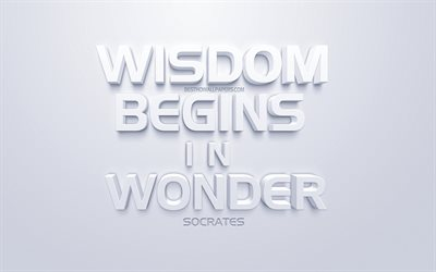 Wisdom begins in wonder, Socrates quotes, white 3d art, white background, quotes about wisdom