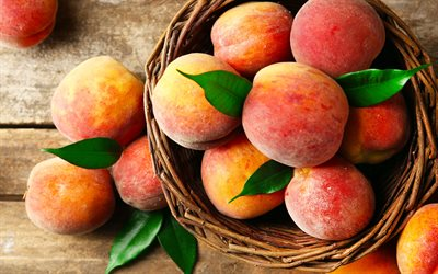 peaches, 4k, basket, close-up, fresh fruits, summer, fruits