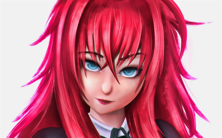 Download Wallpapers Rias Gremory Protagonist High School