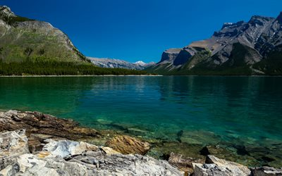 mountain lake, forest, summer, emerald lake, Alberta, Banff National Park, Canada